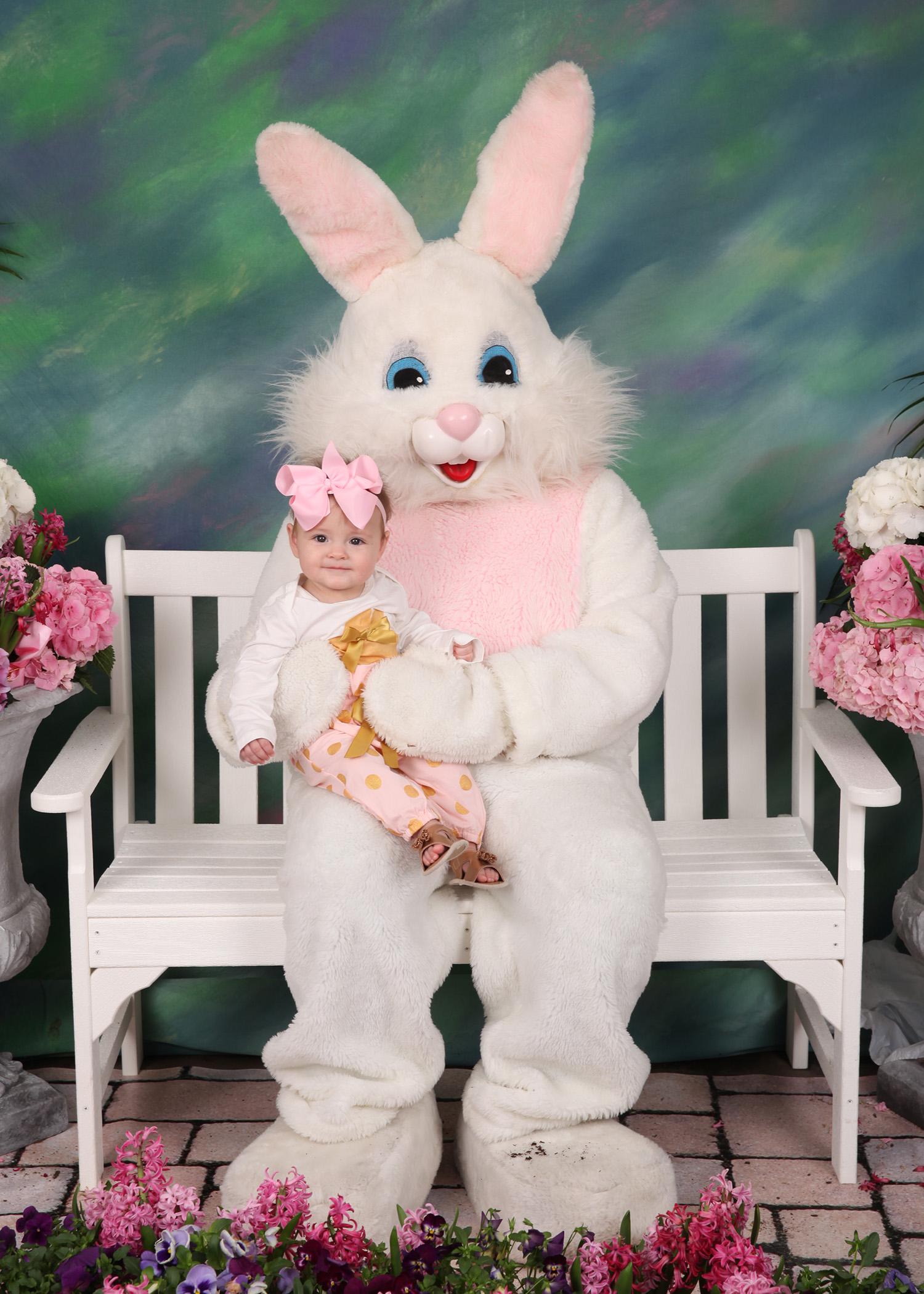 Banick-Bunny3